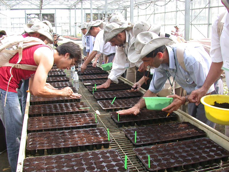Practical training on seed sowing